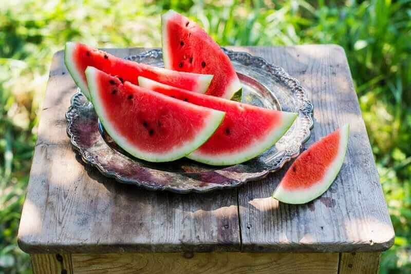 bigstock Watermelon Slices In The Garde