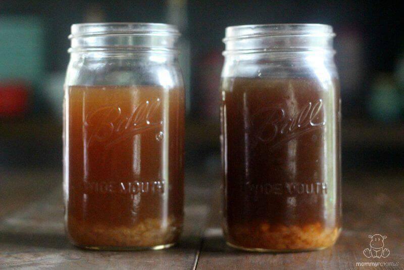 how-to-make-water-kefir-step-3b