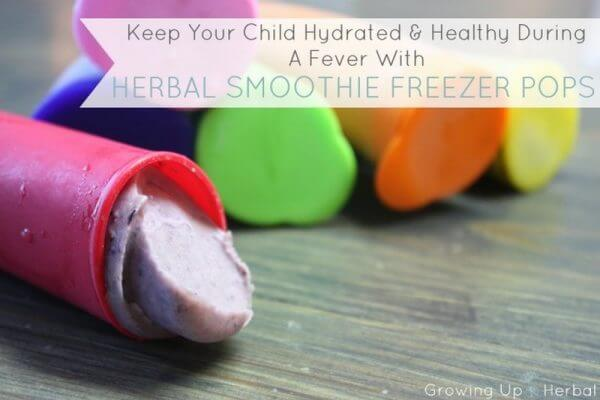 Keep Your Child Hydrated & Happy During A Fever With Herbal Smoothie Freezer Pops