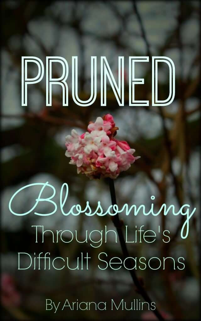 pruned-book