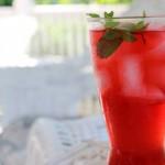 fermented raspberry soda recipe