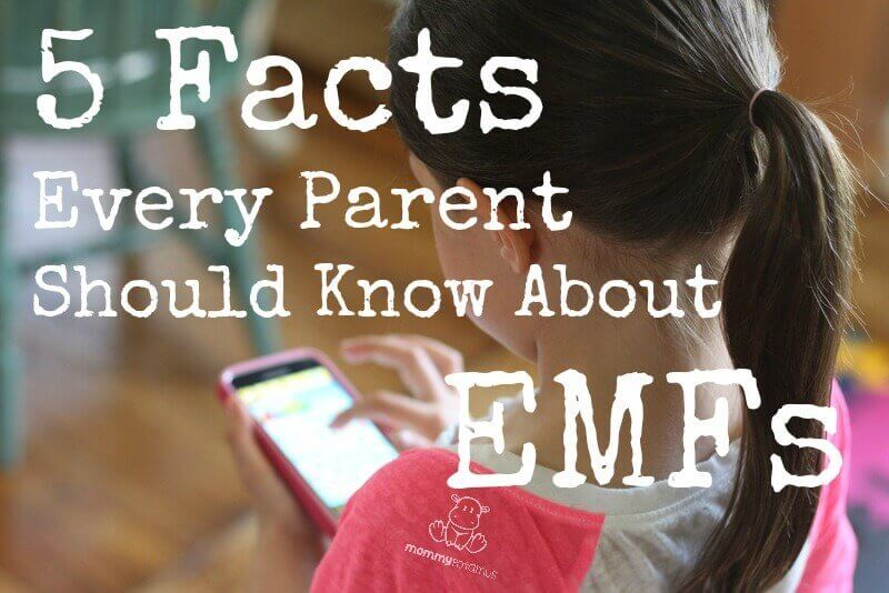 5-facts-about-emfs