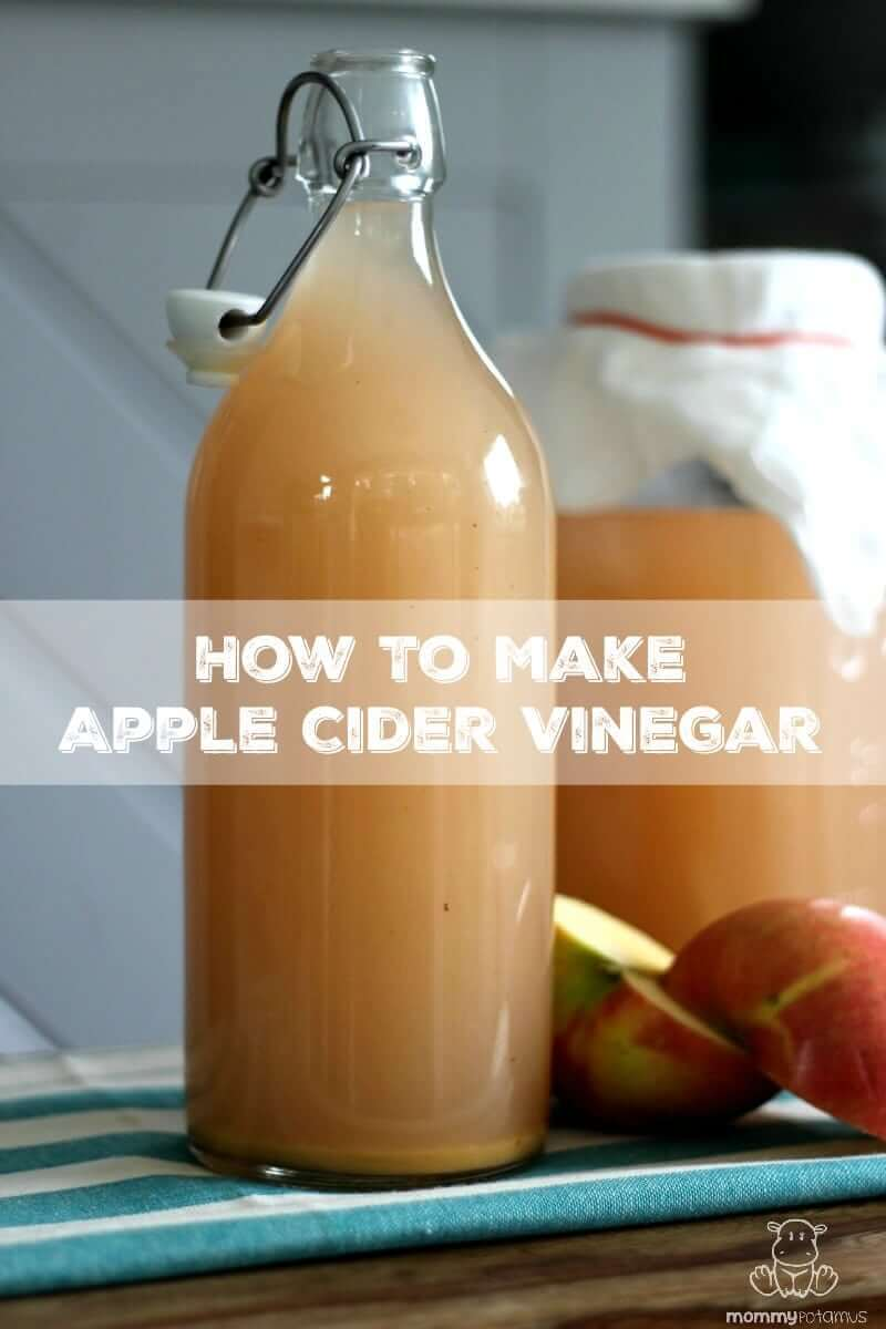 How To Make Apple Cider Vinegar - If you have apples, raw cane sugar, water and a little patience, you can make apple cider vinegar at home - no special skills needed!