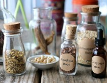 The Beginner's Guide To Adaptogens For Stress Relief And Adrenal Support