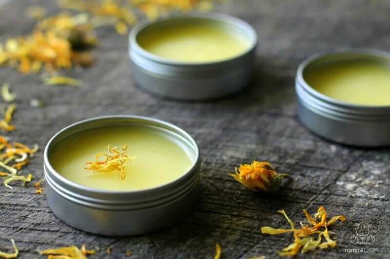 calendula-salve-recipe