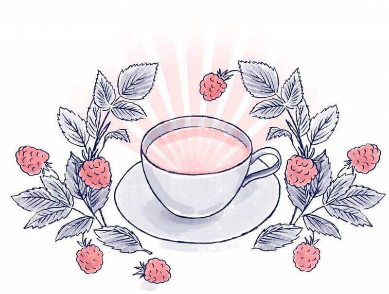 Red Raspberry Leaf Tea - Illustration from The Mama Natural Week-by-Week Guide to Pregnancy & Childbirth