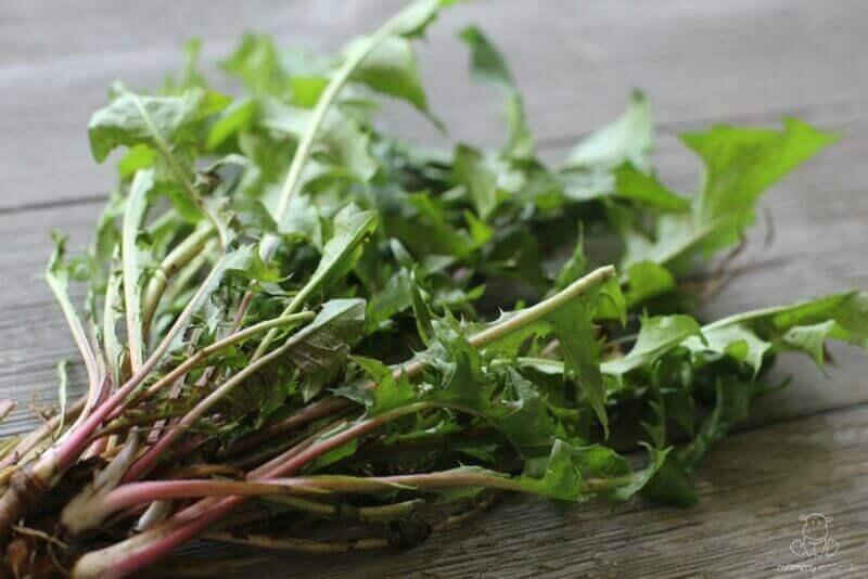dandelion leaf benefits