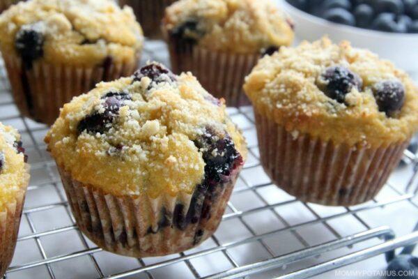 Easy Blueberry Muffins (Gluten-Free, Paleo)