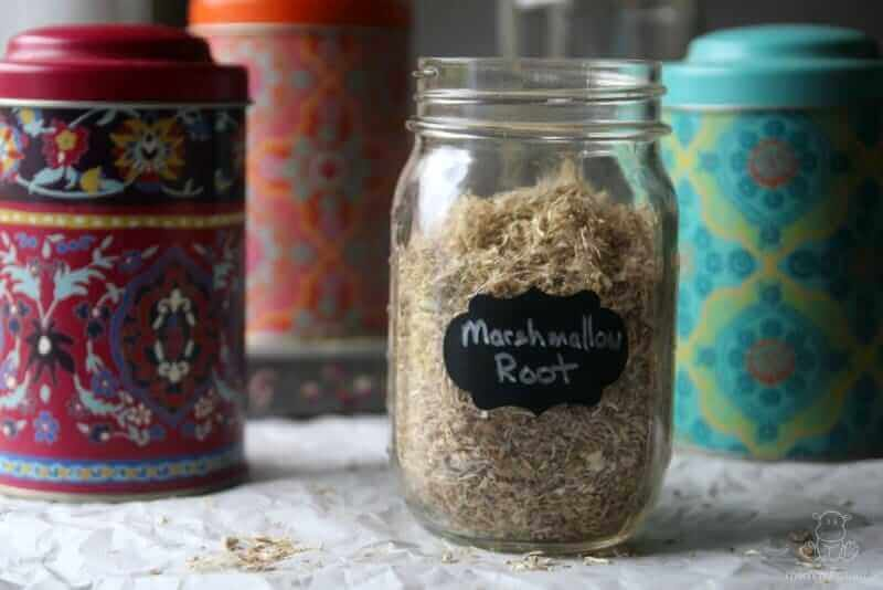 Marshmallow Root Uses And Benefits