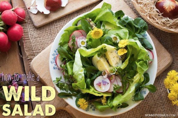 how to make a salad from your backyard