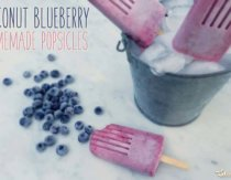 Coconut Blueberry Popsicle Recipe