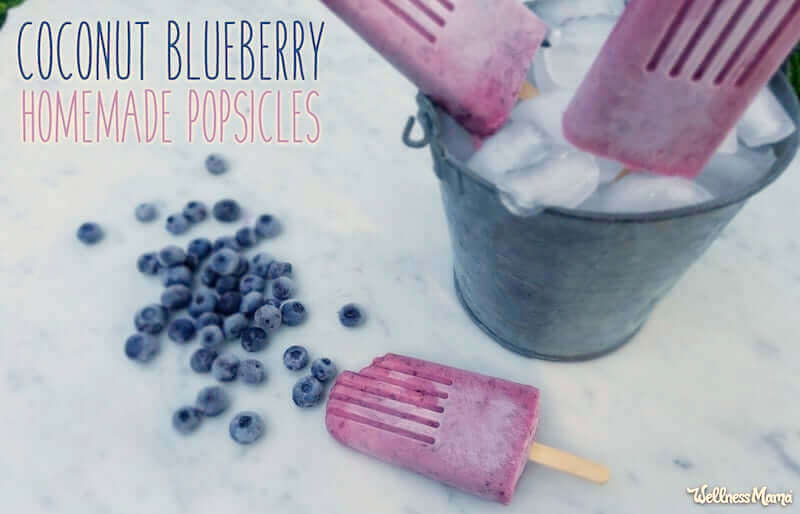 coconut blueberry popsicles